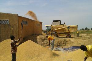 Una missione a Bagré in Burkina Faso