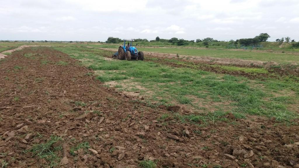 coltivazione riso burkina faso, salute e sviluppo, cooperazione allo sviluppo